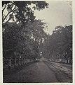 Collectie NMvWereldculturen, RV-A42-1-25, Foto, 'Gang Scott in Weltevreden, Batavia', fotograaf Woodbury & Page, ca. 1875.jpg