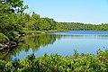 Colpitt Lake (29020165962).jpg