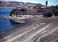 Columbia river (USA) taken from the Oregon side looking toward the Washington side, 1966 (1806534285).jpg
