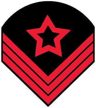 Ordnance sergeant - Confederate ordnance sergeant rank insignia