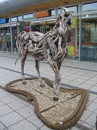 Heather Jansch - Image: Cork and Driftwood Horse geograph.org.uk 374288