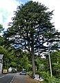 Corris - panoramio (5).jpg
