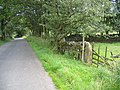 Cow Close Lane, field gate, and benchmark - geograph.org.uk - 719181.jpg