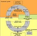 Cycle Toxoplasma gondii nltxt.jpg
