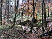 D-BY - Rohrbachtobel im Wirlinger Forst 1546.JPG