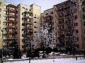 DOBRZEC ZIMOWY 02 - panoramio.jpg