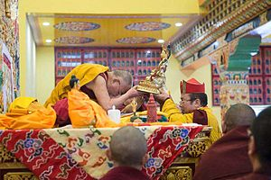 Pema Tönyö Nyinje - Historic visit of the 14th Dalai Lama to Palpung Sherabling Monastery, May 11 and 12, 2015. 12th Tai Situ offering a long-life empowerment to the Dalai Lama.