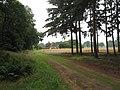 Dalfsen, Netherlands - panoramio (2).jpg