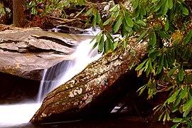 Davidson River Pisgah Nat Forest.jpg