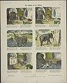 De snijder en de olifant-Catchpenny print-Borms 0092.jpeg