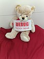 Debug teddy bear.jpg