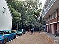 Den Haag (44224023384).jpg