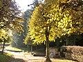 Der Dorfbrunnen in Vielbrunn.JPG
