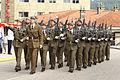Desfile final de la Jura de Bandera (15262637010).jpg