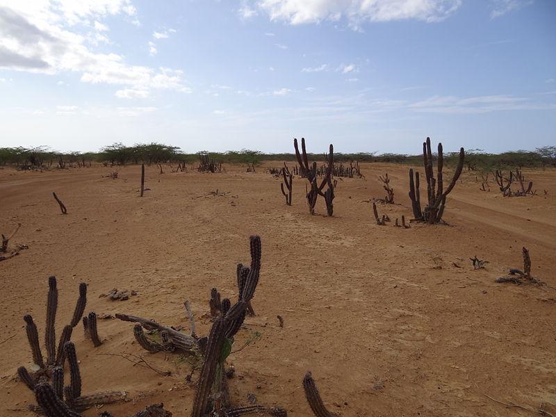 File:Desierto de la Guajira.JPG