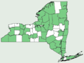 Diervilla lonicera NY-dist-map.png