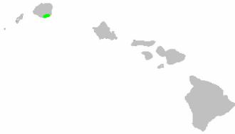 Kauaʻi cave wolf spider - Image: Distribution.adeloco sa.anops.1