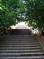 Doudova, schody, z ulice Na dolinách.jpg