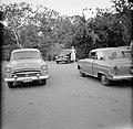 Drie auto's, Bestanddeelnr 252-3272.jpg