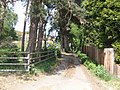 Driveway to Spring Valley - geograph.org.uk - 424201.jpg
