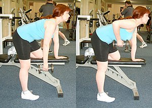 A one arm dumbbell bent-over row with a bench ...