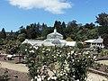 Dunedin Botanic Garden kz03.jpg