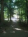 Dunn's Woods pathway westward.jpg