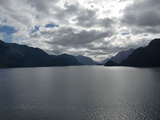 fiord in New Zealand