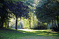 East from Horse Pond Little Easton Essex England 2.jpg