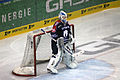 Eisbären Berlin-Nürnberg Ice Tigers-2015-02-15-cc-by-denis-apel-07.JPG