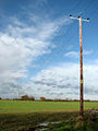 Electricity line crossing field - geograph.org.uk - 1041408.jpg