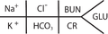 Electrolyte diagram.png