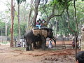Elephant and rides on it at Bannerghatta National Park 4-24-2011 1-04-20 PM.JPG