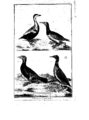 Encyclopedie volume 5-084.png