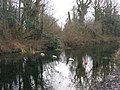 End of navigation - Basingstoke Canal - geograph.org.uk - 662812.jpg