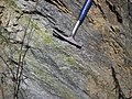 Epidote in gneiss (Precambrian; Rt. 93 roadcut next to the New River, Mouth of Wilson, Virginia, USA) 5 (30704037470).jpg