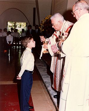 In the Western Catholic Church, the administration of the Eucharist to children requires that they have sufficient knowledge and careful preparation to receive the body of Christ with faith and devotion. Eucharist001.jpg