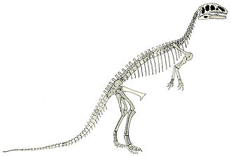 Eustreptospondylus - Nopcsa's 1905 skeletal restoration