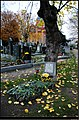 Evangelischer Friedhof Matzleinsdorf - Ev. Friedhof 081.jpg
