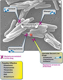 Extensively drug-resistant tuberculosis Tuberculosis that is resistant to the most effective drugs