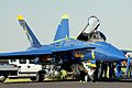 F17 Blue Angels (7948002982).jpg