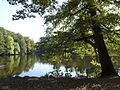 FFM Jacobiweiher Uferblick von NO 1.jpg