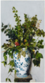 FLOWERS IN A CHINESE VASE.png