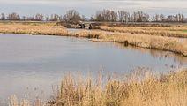 Fammensrakken Mûzekamp, Boornzwaag 12.jpg