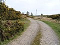 Farm road - geograph.org.uk - 418058.jpg