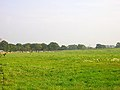 Farmland, Coldharbour Road - geograph.org.uk - 62600.jpg