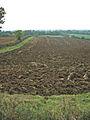 Farmland near Eaton, Leicestershire - geograph.org.uk - 67365.jpg