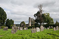 Ferns Abbey and Graveyard 2009 09 28.jpg
