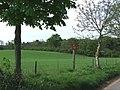 Fields and Woodland, Lower Hopstone, Shropshire - geograph.org.uk - 414122.jpg