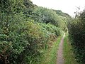Fife coast path - geograph.org.uk - 1504665.jpg
